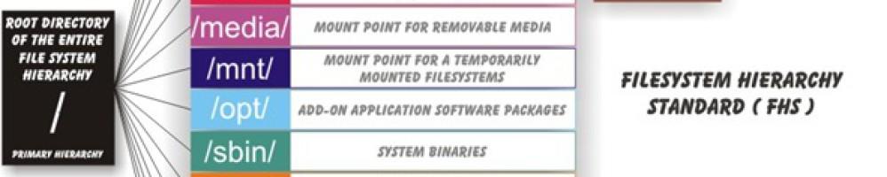 Устройство каталогов в Linux