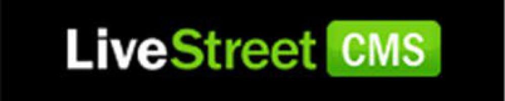 Вставка счетчиков в LiveStreet
