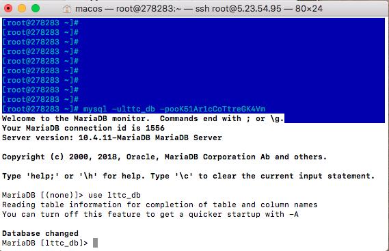 Импорт и экспорт базы данных Mysql через консоль (SSH, ТЕРМИНАЛ)