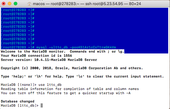 MySQL MariaDB SSH